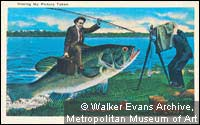 Walker Evans' Picture Postcard Collection