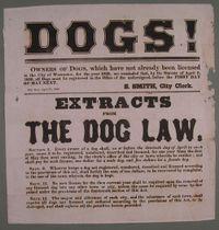 Dog_law