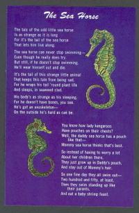 Seahorsepostcard