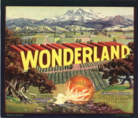 Wonderland_escondido0